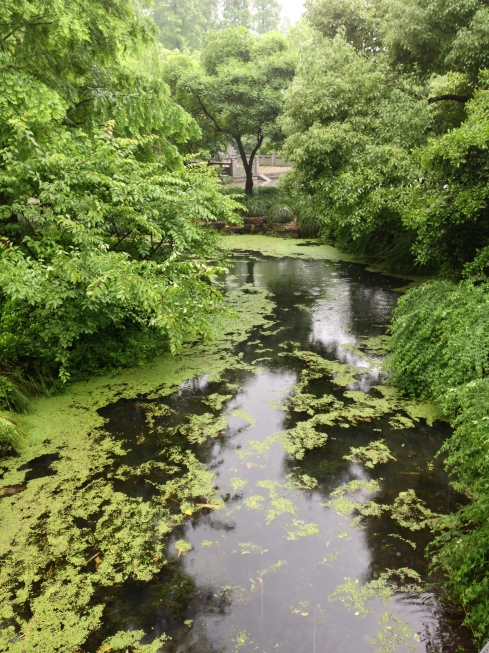 A combination of the green and waters in Zhejiang paint a beautiful picture